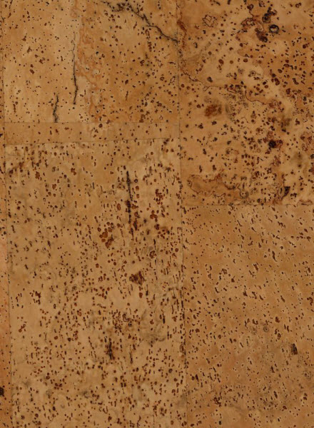 Cork wall tiles harmony jelinek cork for Cork flooring on walls